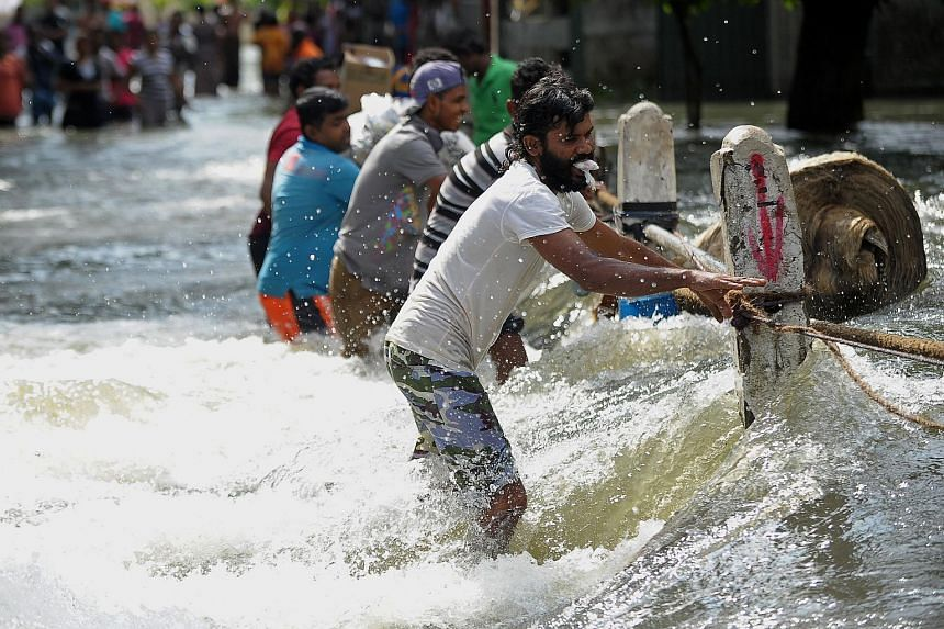 Flood-affected Sri Lankans struggling to cross a torrent of floodwaters in Kelaniya, on the outskirts of Colombo on May 21, 2016.
