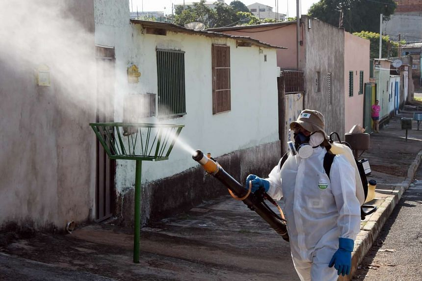 A member of the National Health Foundation fumigates against the Aedes aegypti mosquito in Gama, 45km south of Brasilia, on Feb 17, 2016.