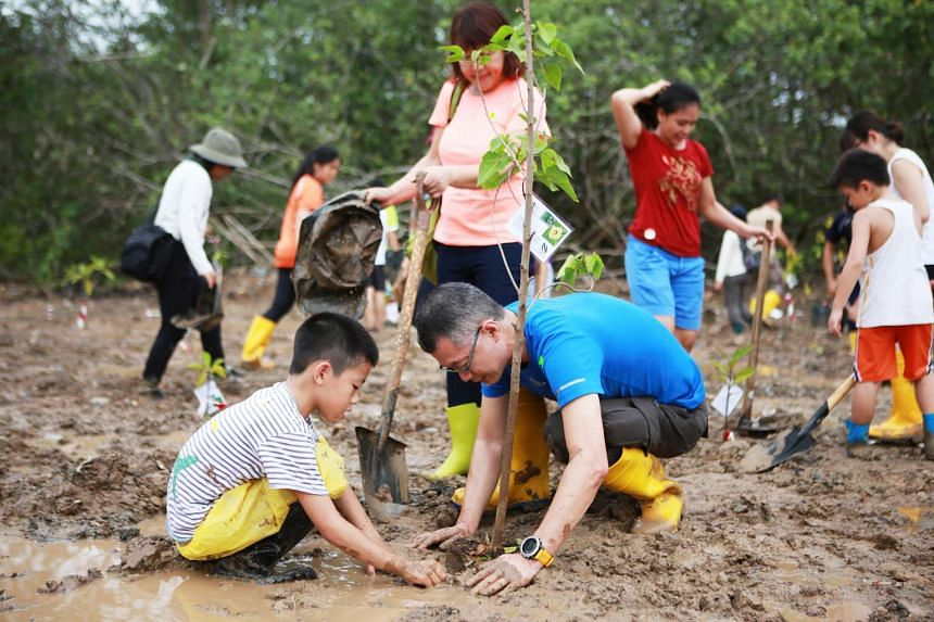 Mr Sean Lam and his wife, Mrs Margie Lam, along with their son, Leeuwin, are planting a mangrove tree on International Day for Biological Diversity.