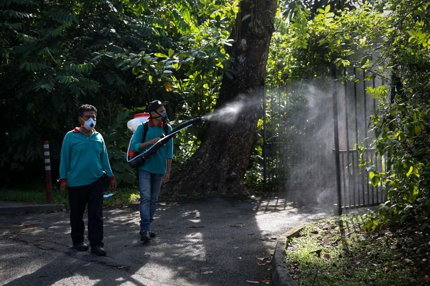 Pest controllers, together with NEA officers misting to control the mosquito population at Watten Estate on May 16, 2016.