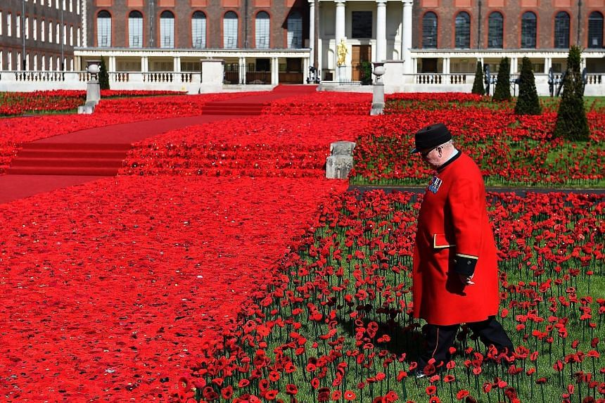 Pensioner John Back walking through a field of 5,000 cotton poppies created by artists Lynn Berry and Margaret Knight at the Chelsea Flower Show in London yesterday. This year's theme of the well-known flower show focuses on health and happiness in t