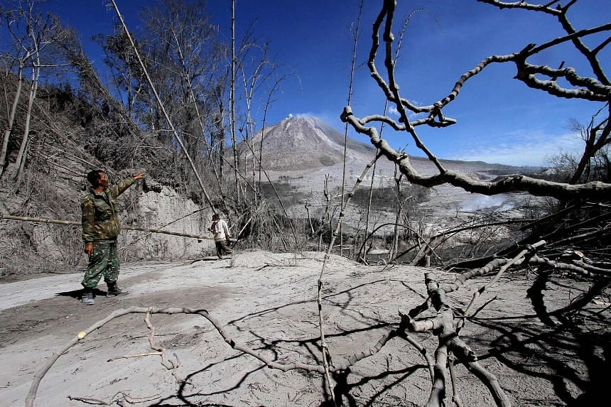 Indonesian rescuers searching for survivors in scorched villages and devastated farmlands yesterday after a volcano erupted in clouds of searing ash and gas, killing seven people and leaving others suffering life-threatening burns. Witnesses describe