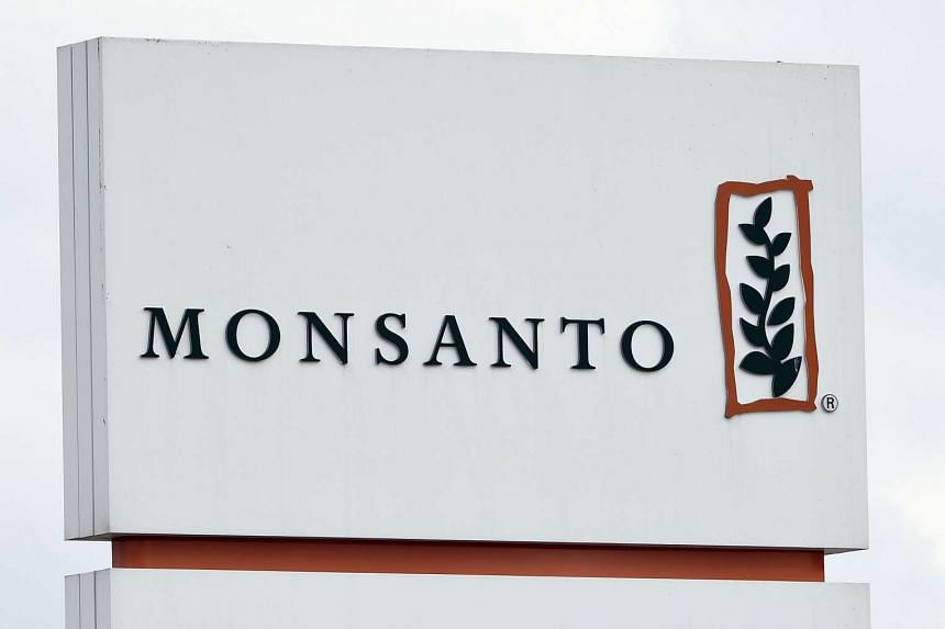 The Monsanto logo at the firm's manufacturing site and operations centre at in Lillo near Antwerp, on May 24, 2016.