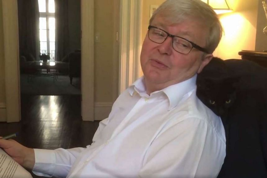 Former Australian prime minister Kevin Rudd speaking to his cat Mei Mei in a video posted on his Facebook account.