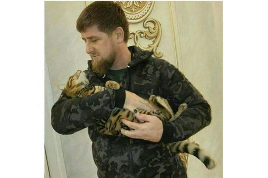 Chechnya leader Ramzan Kadyrov has taken to Instagram to search for his missing cat.