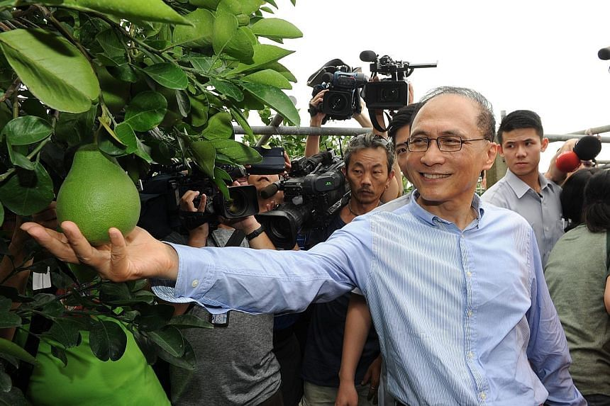 Taiwan's new Premier Lin Chuan visiting a pomelo farm in Tainan City, south Taiwan, on Sunday. The idea of diversifying the economy is laudable, say analysts, who agree that the current situation - where two-thirds of the island's overseas investment