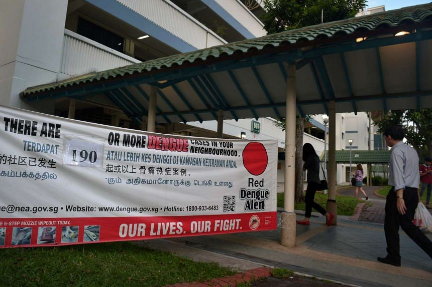 A banner displaying the number of dengue cases at dengue hotspots in Tampines Ave 4.