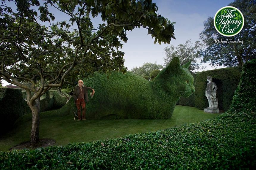 An image of The Topiary Cat created by Richard Saunders.