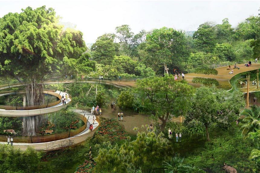 Artist's impression of the rainforest park.