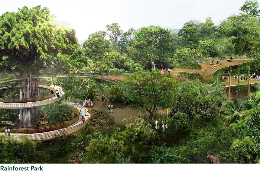 An artist's impression of the Rainforest Park, a new wildlife park to be built in the Mandai nature precinct, expected to be completed by 2023. The first phase of development, which covers construction of the park and the relocated Bird Park, could s