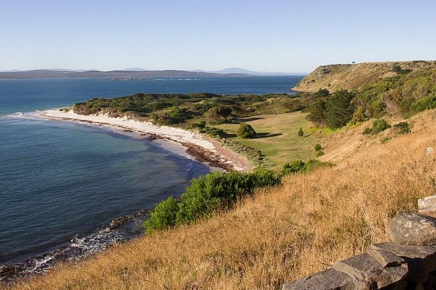 The 287ha Waterhouse Island - about the size of 350 football fields - is 2km from mainland Tasmania.