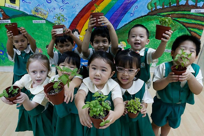 In celebration of World Environment Day tomorrow, 1,400 children from Kinderland pre-schools, including those pictured here at its Pandan Valley branch, are turning into little farmers for a good cause. Children as young as 18 months to those as old