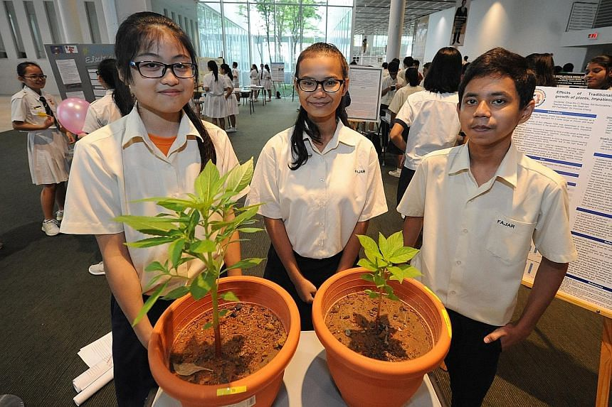 (From left) Renea Chua, Siti Nurzulaikha Selamat and Muhammad Imran found that plants grow better when watered with traditional Chinese medicine infusions, one of the projects presented at the 13th Scientific Thinking Programme.