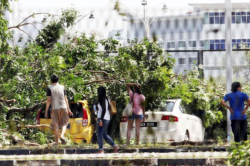 Kuala Lumpur City Hall received many reports of fallen trees in the wake of the heavy rain and hailstorm.