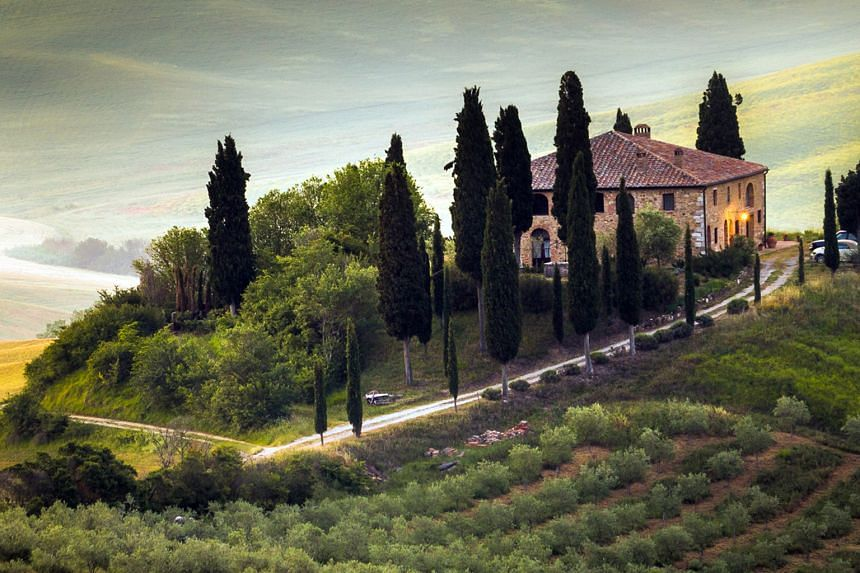 Explore the hills of Tuscany.