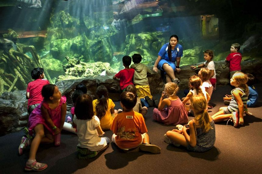 Participants of the Living in the Ocean (Lito) programme organised by the Underwater World Singapore.