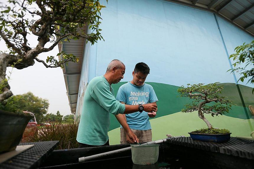 Pastor Andrew Choo (far left) talking Josiah Kiang through a mood swing at the Onesimus Garden farm. Mr Kiang, who has autism, had become sulky about being photographed. Pastor Choo uses farming as a form of therapy to help young people with special