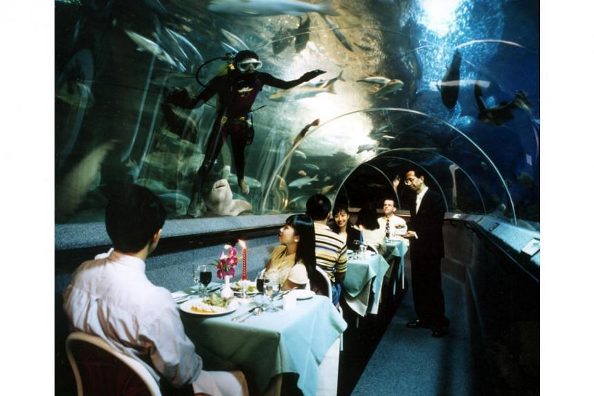 Divers feed the fish in the tanks while guests are being served dinner inside the tunnel at Underwater World Sentosa.