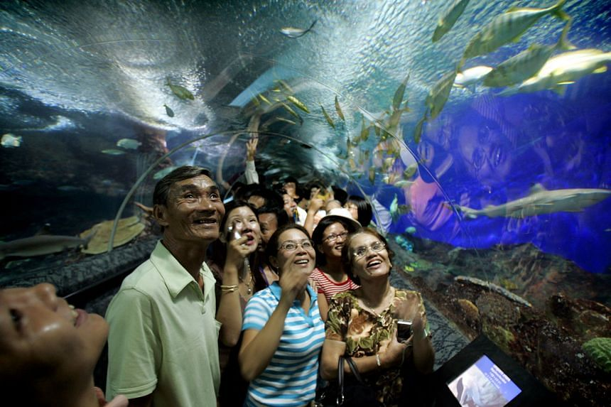 The lease for Underwater World's premises expires in less than two years and the early closure will facilitate the transfer of animals to new homes. The attraction has 2,500 marine creatures across 250 species.