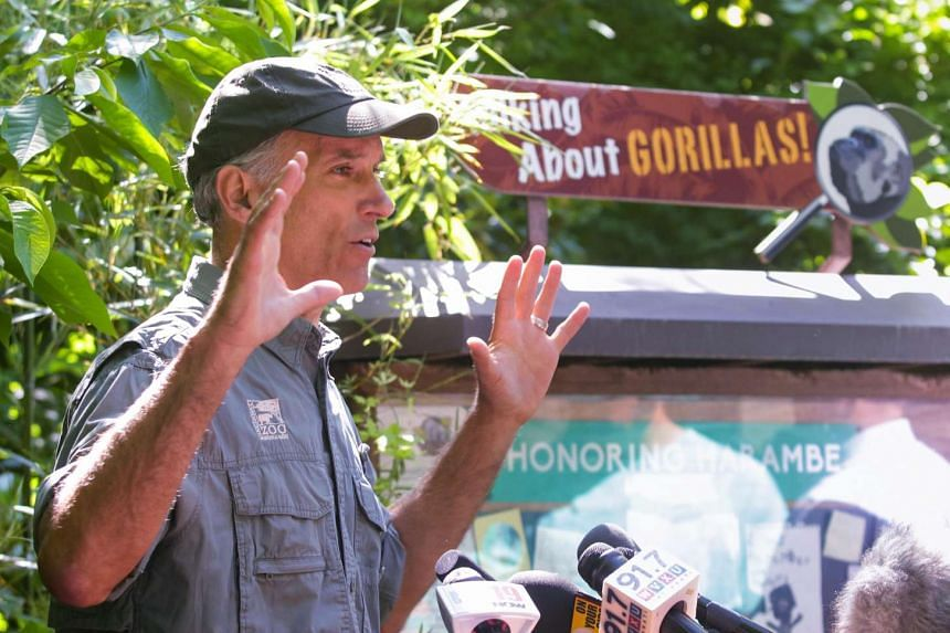 Thane Maynard, executive director of the Cincinnati Zoo and Botanical Gardens, speaks to reporters at the Cincinnati Zoo's Gorilla World exhibit reopening after a boy tumbled into its moat May 28 and officials were forced to kill Harambe, a Western l
