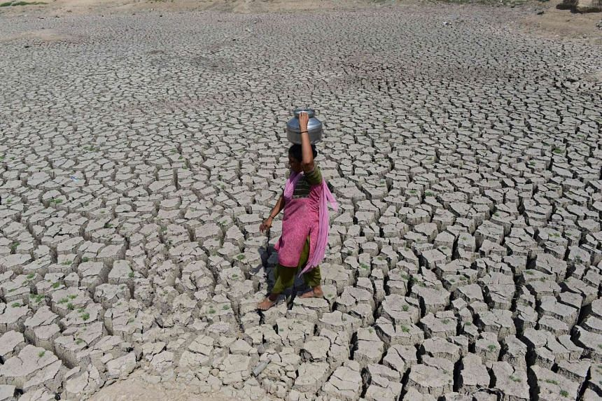 An Indian woman walks on the parched bed of Chandola Lake with a metal pot on her head to fetch water in Ahmedabad on May 20, 2016.
