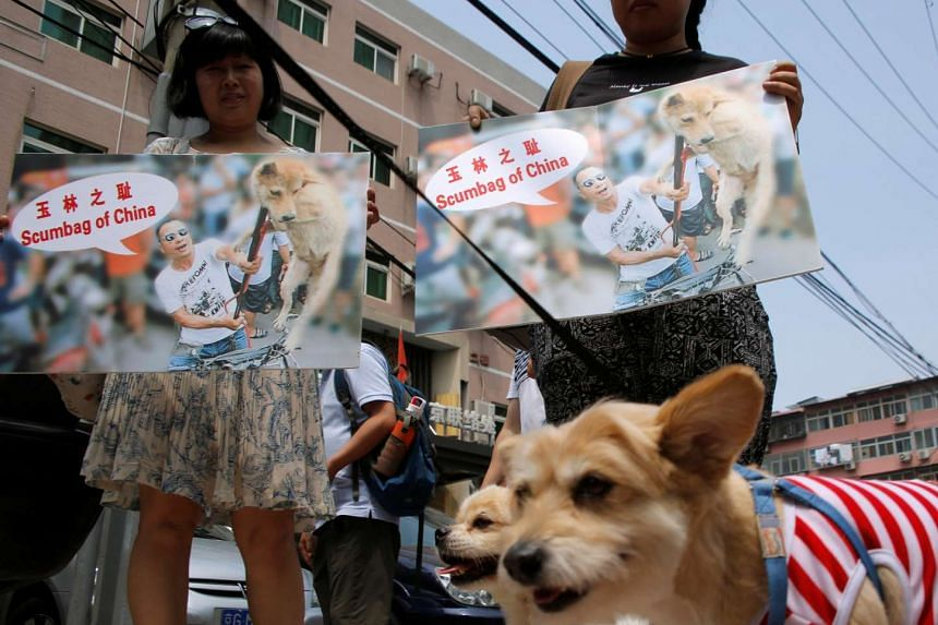Animal activists hold banners protesting against Yulin Dog Meat Festival, as they carry rescued stray dogs in front of Yulin City Representative office in Beijing, on June 10, 2016.