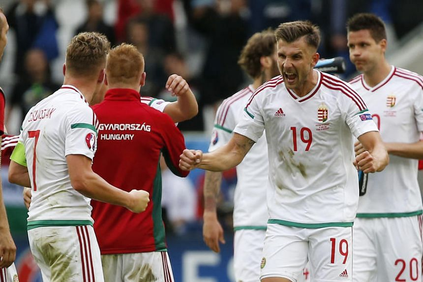 Hungary's Tamas Priskin and Balazs Dzsudzsak celebrate after the game.