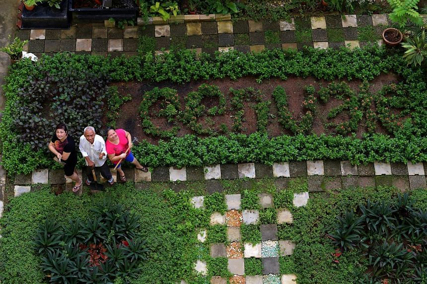 Amid the hustle and bustle of urban living, a love for gardening has brought residents of Tampines Greenvale together to cultivate a community garden they can be proud of - it has won a top accolade at a biennial garden competition. 	The garden was o