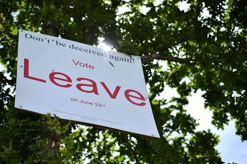 """A """"Vote Leave"""" sign is seen in a tree near Smarden urging to vote for Brexit in the upcoming EU referendum is seen on the roadside near Charing south east of London on June 16, 2016."""