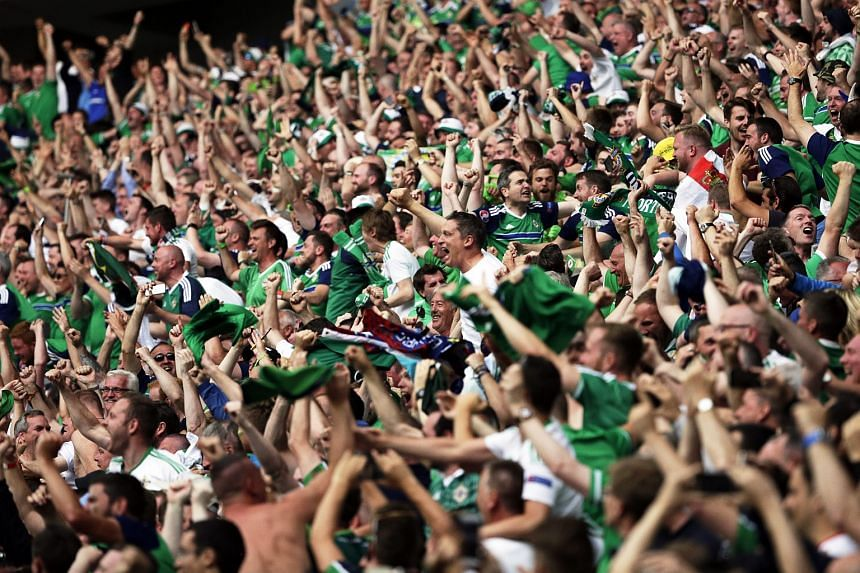 Northern Ireland fans at the match against the Ukraine.