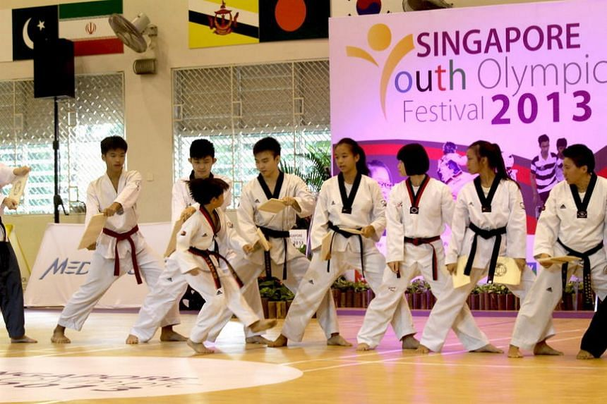 Taekwondo exponents putting on a demonstration at the opening ceremony of the Singapore Youth Olympic Festival in 2013.