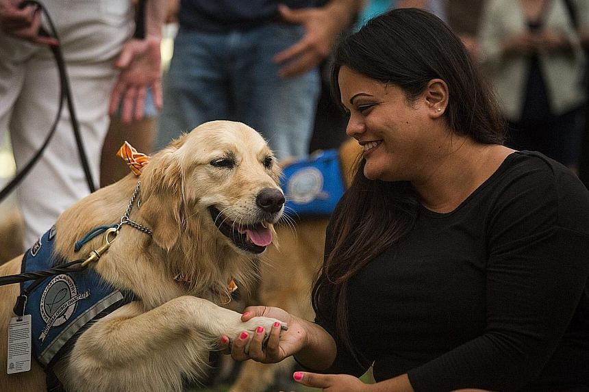 Ms Melissa Soto with comfort dog Susie near a memorial site for the victims of the Orlando mass shootings at the Dr Phillips Centre for the Performing Arts in Orlando, Florida, on Tuesday.