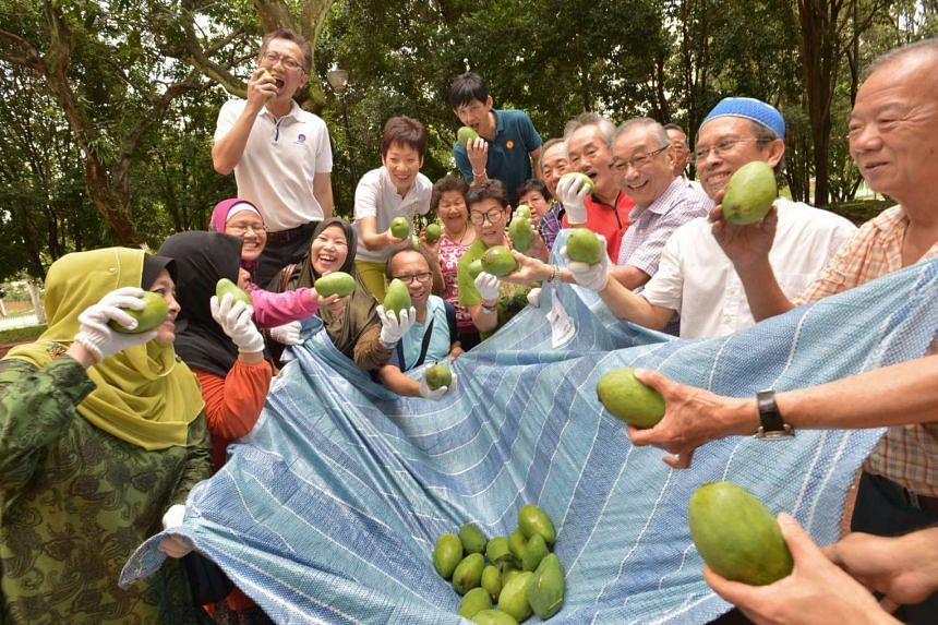 Residents of Jurong East posing with the fruits of their labour.