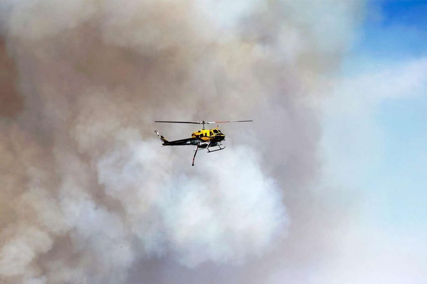 A firefighting helicopter flies pass a smoke column, June 18, 2016 at the Sherpa Fire near Santa Barbara, California.