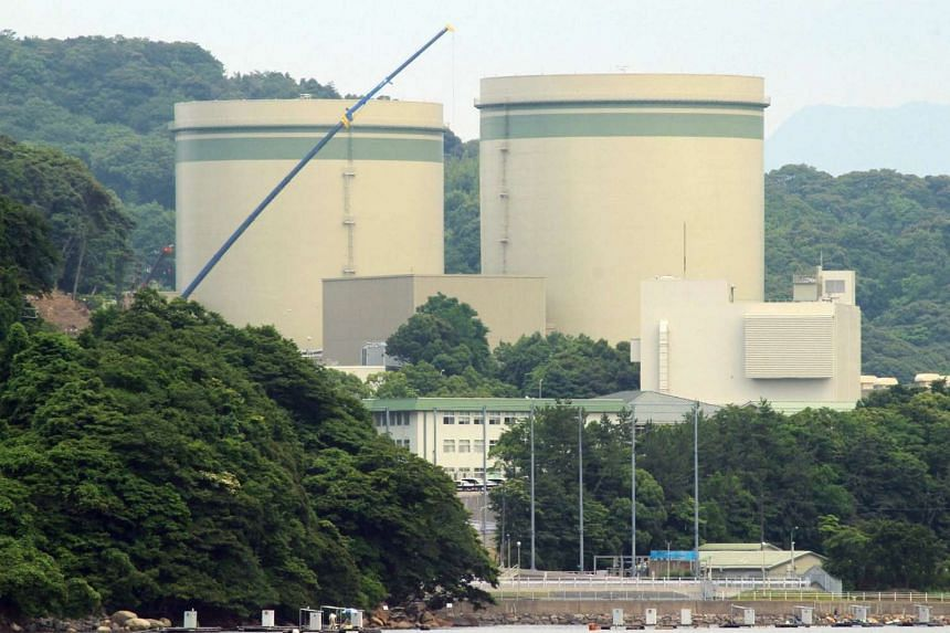 Kansai Electric's No. 1 and No. 2 reactors at the Takahama nuclear plant are seen in Takahama, Fukui prefecture, on June 20, 2016.