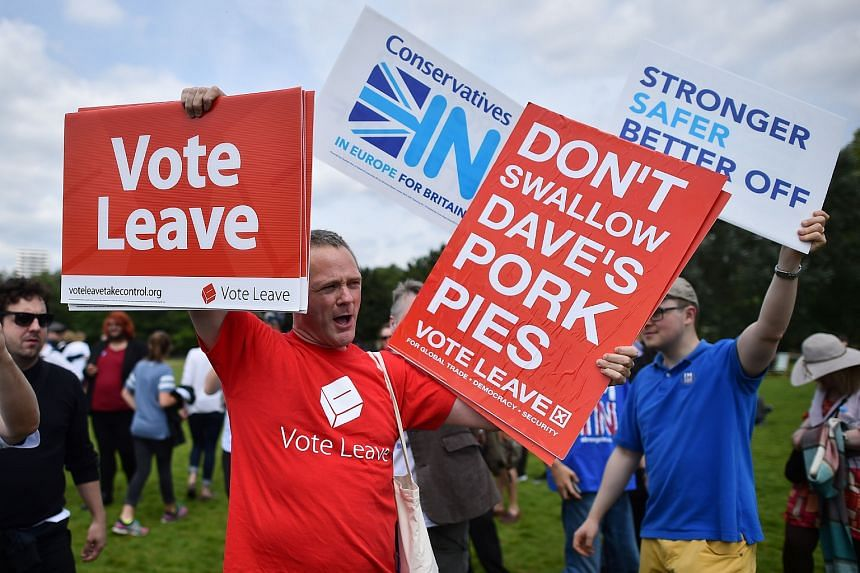 A campaigner for Vote Leave holds a placard during a rally for Britain Stronger in Europe ahead of the the forthcoming EU referendum, in Hyde Park in London on June 19.