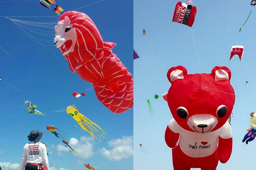 Left: Ms Maggie Mok of Show Kites Singapore said the big kites her organisation has are mainly white and red - like its version of a Merlion kite - to represent Singapore. Right: Another big kite. Ms Widiyati of the Singapore Kite Association said in