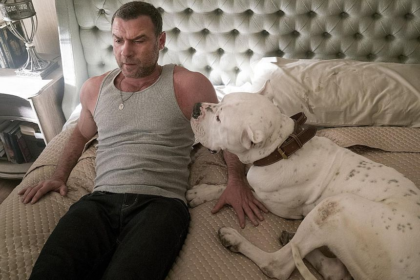 In the new fourth season, Ray Donovan (played by Liev Schreiber, above) tries to reconnect with his ex-convict father, Mickey (Jon Voight).