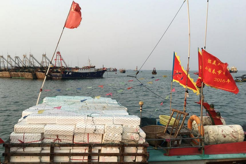 Chinese fishermen have wreaked havoc on the ecosystem of the South China Sea.