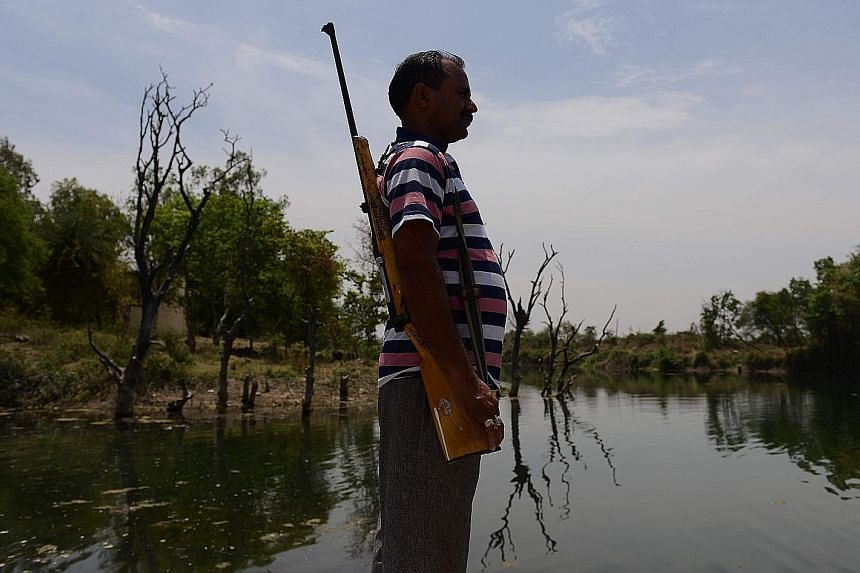 A gunman stands guard over a reservoir in Tikamgarh in the central Indian state of Madhya Pradesh. Armed men have been securing the Barighat dam for months against water theft by desperate farmers in order to ensure there is water for thousands of Ti