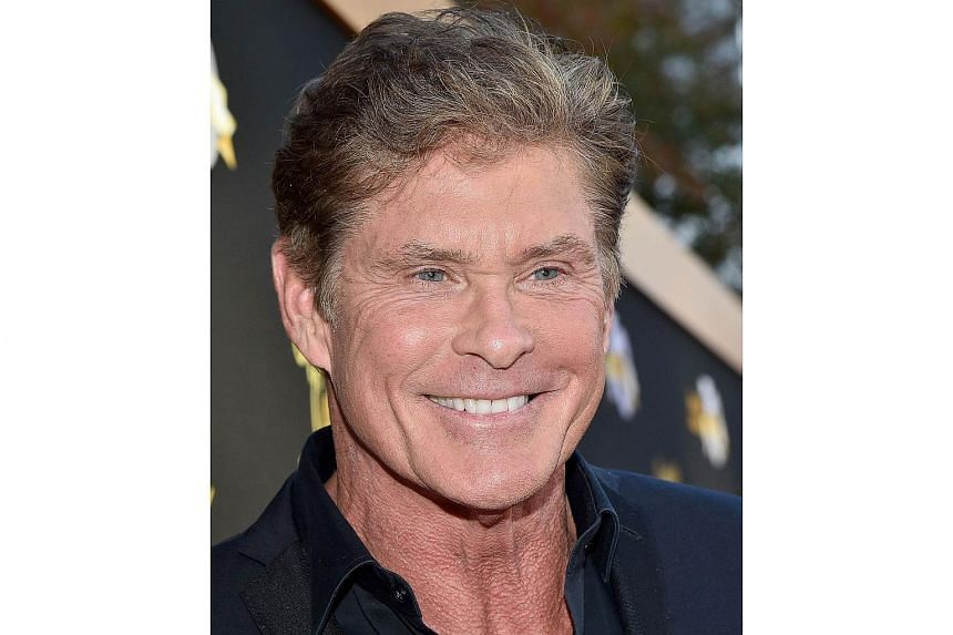 Actor David Hasselhoff will be captaining the third edition of It's The Ship, one of South-east Asia's biggest dance music festivals.