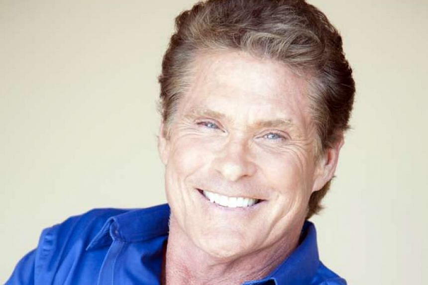 David Hasselhoff (above) will captain this year's It's The Ship while Australian electronic dance music act Knife Party will headline.