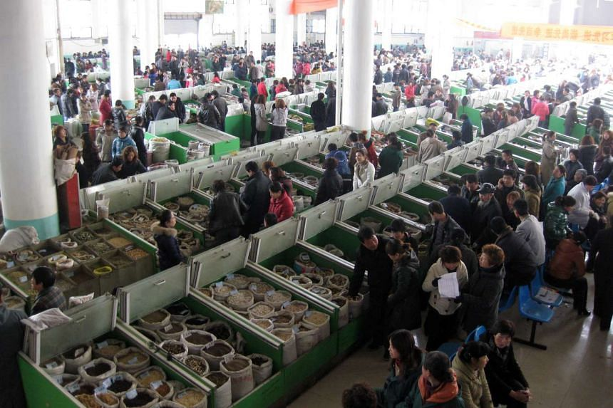 Buyers and sellers thronging the Central Trading Hall, the main distribution centre of traditional Chinese medicine (TCM) at Anguo, in Hebei province in March 2011.