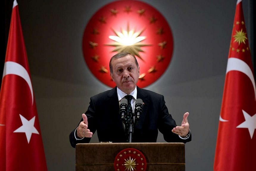 Turkish President Tayyip Erdogan has been quoted as saying that Syrian refugees living in Turkey could eventually be granted Turkish citizenship.