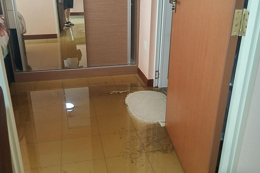 From left: Dirty water flowing from Madam Khoo's flat into the corridor; sewage stains and a pool of dirty water near a built-in wardrobe; and a messed-up kitchen.