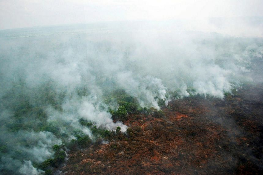 A forest fire is seen burning from a helicopter belonging to the Indonesian National Board of Disaster Management in Pelalawan, Riau province, Sumatra island on June 13.