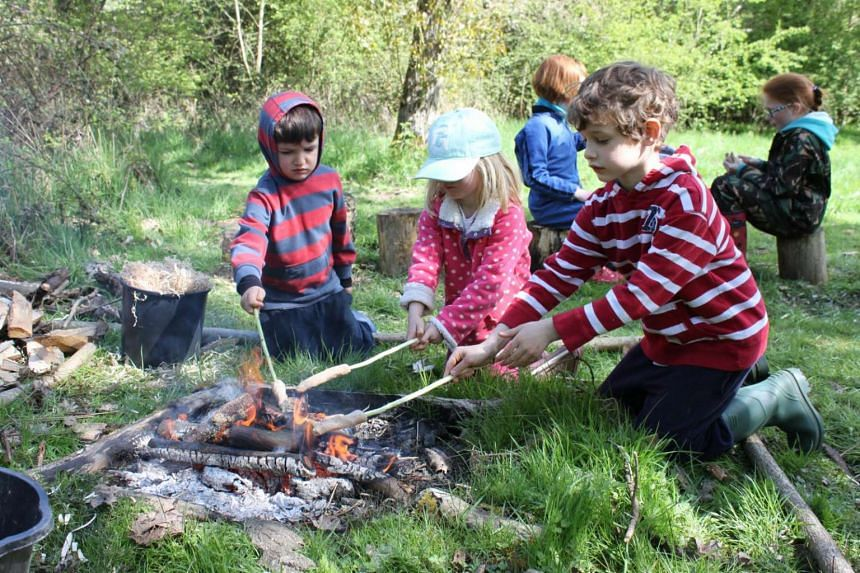 A class at the Essex Wildlife Trust Forest School.