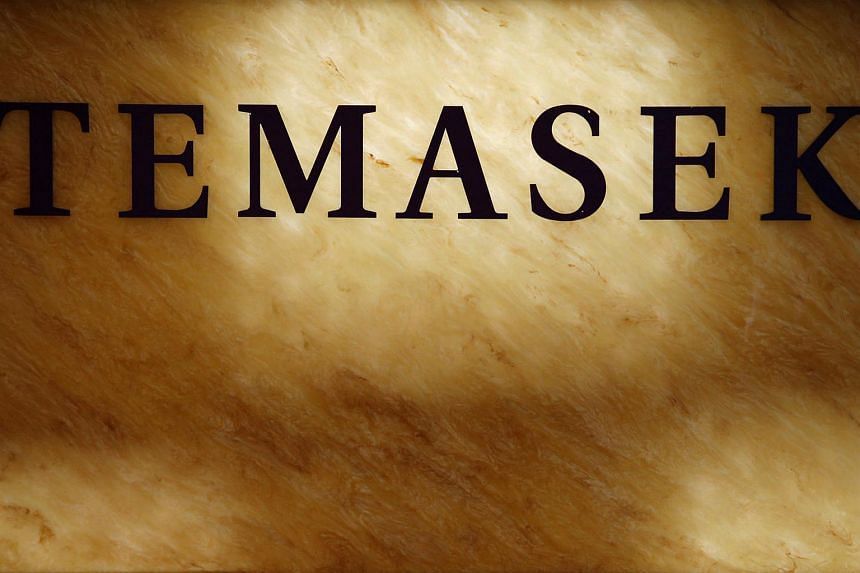 Temasek Holdings could report a decline in its net portfolio value for the first time since 2009, following a roller-coaster year in the global economy and financial markets.