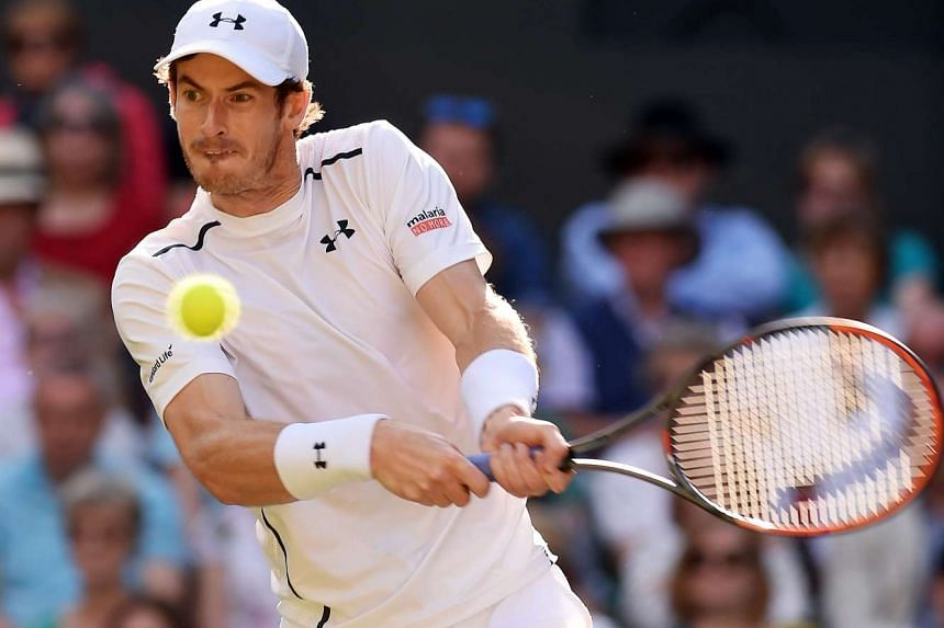 Scot Andy Murray will meet Canadian Milos Raonic in the Wimbledon final.