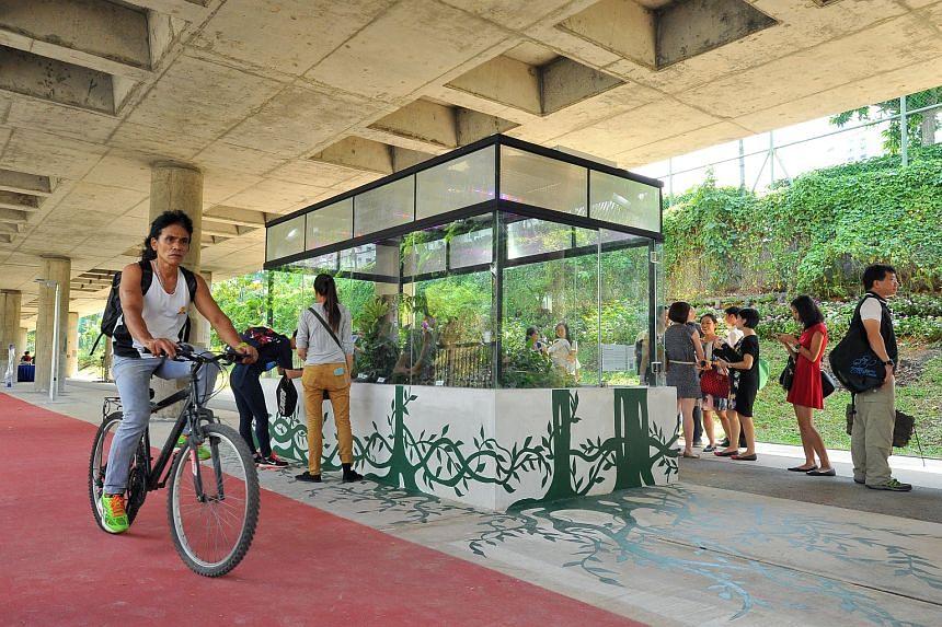 A terrarium located along the MRT viaduct near Deyi Secondary School at Ang Mo Kio Avenue 8.